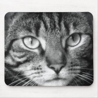 Tabby Cat Mousepad Mousepads