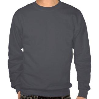 Take Flight Aviation Wings Pull Over Sweatshirts