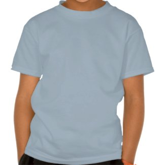 The Flying Congressman shirt