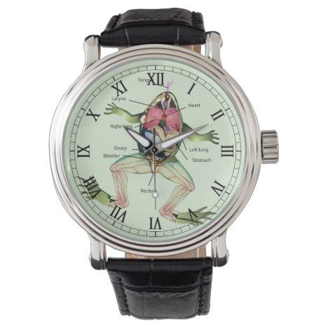 The Frog's Anatomy Illustration Romans Wrist Watch
