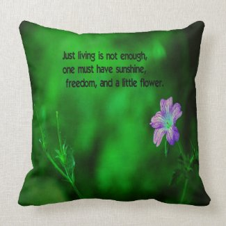 The secret to life throw pillow