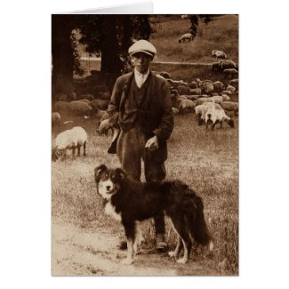 """The Shepherd""~Border Collie Notecard Cards"