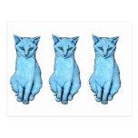 Three Blue Cats Postcard