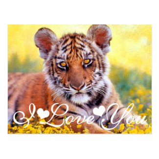 Tiger Baby Cub I Love You Postcard