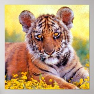 Tiger Baby Cub Poster