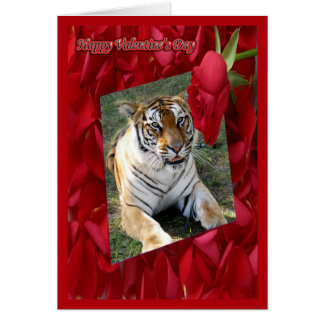 Tiger Valentine Cards Zazzle