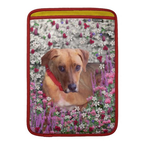 Trista the Rescue Dog in Flowers Sleeve For MacBook Air
