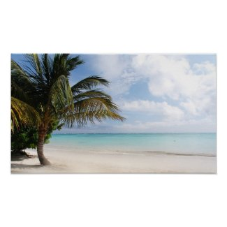Tropical Beach print / poster