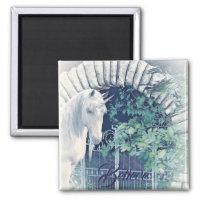 Unicorn garden magnet