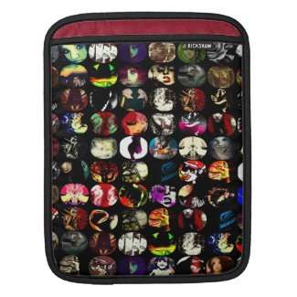 Unique ipad case sleeves for iPads