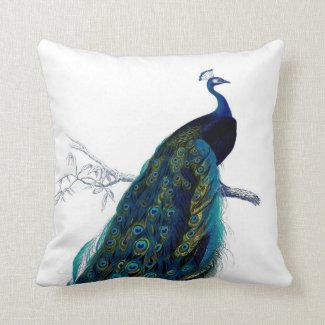 Vintage Blue Elegant Colorful Peacock