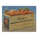 Vintage California Oranges Post Card
