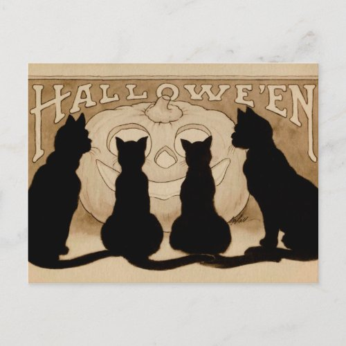 Vintage Halloween black cats pumpkin postcard