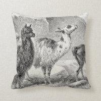 Vintage Llama Alpaca Template Llamas Alpacas Throw Pillow
