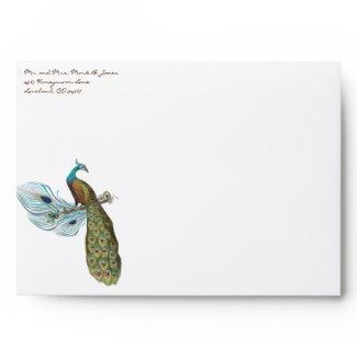 Vintage Peacock Wedding Envelopes envelope