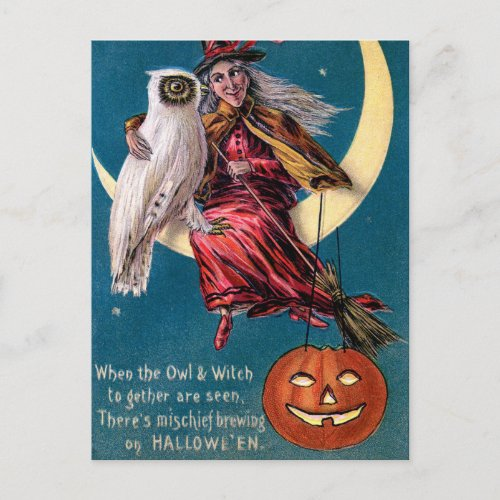 Vintage Witch pumpkin owl Halloween postcard