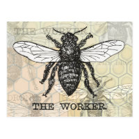 Vintage Worker Bee Illustration Postcard