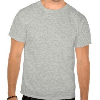 Warning: Pi is Irrational shirt