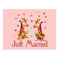 Wedding Giraffes Postcard