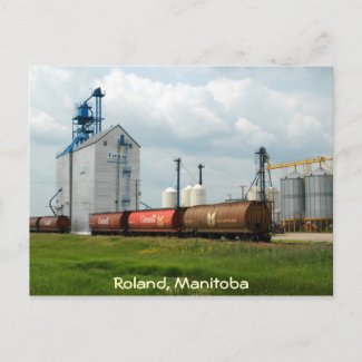Western Grain Elevator postcard