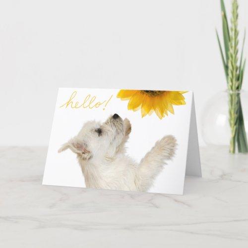 Westie Hello Blank Notecard