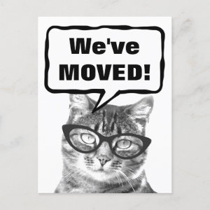 We've moved moving postcards with funny cat