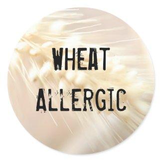 Wheat Allergic Sticker