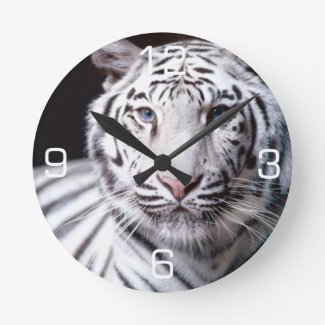 White Bengal Tiger Photography Round Clock
