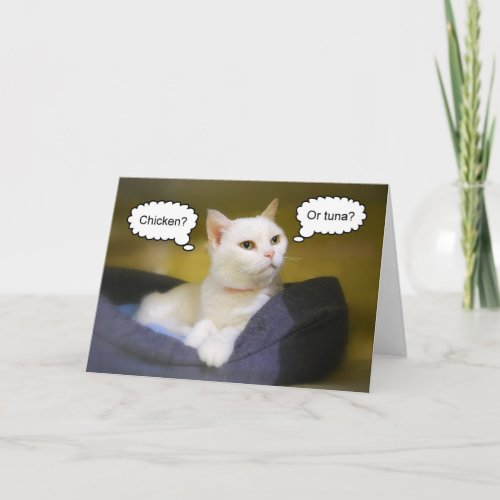 White Cat Funny Birthday Card card