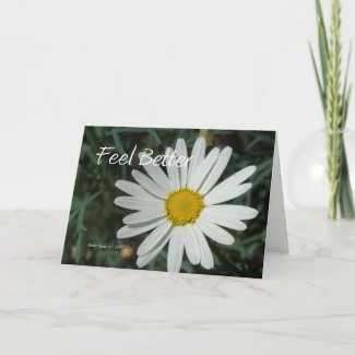 White Daisy - Feel Better - Customizable Card card