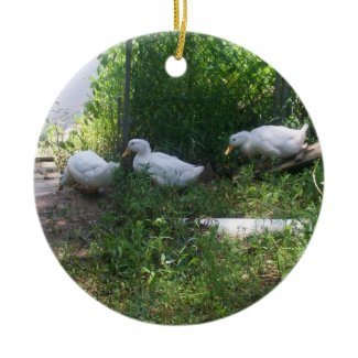 White Ducks on a Ramp Ornament ornament