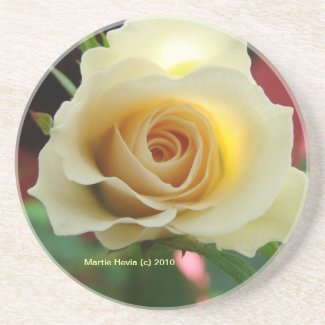 White Rose Bud - Coaster coaster