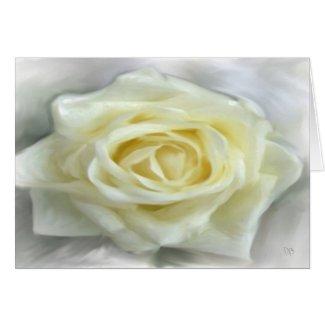 White Rose Cards