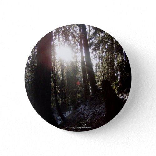 Winter Sunrays #16 button