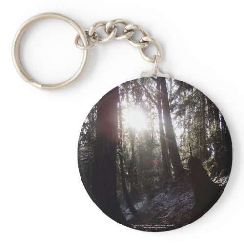 Winter Sunrays #16 keychain