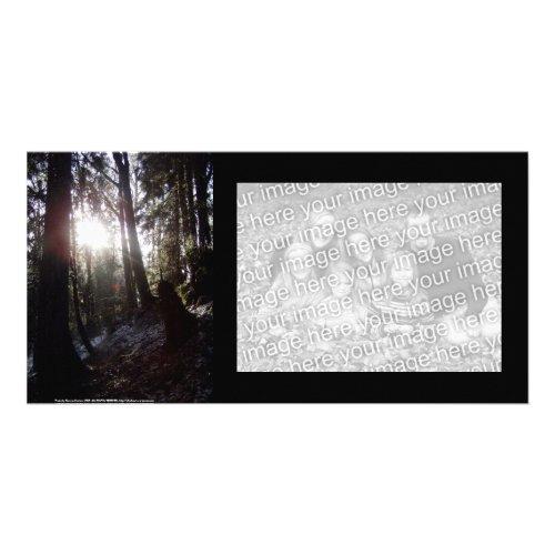 Winter Sunrays #16 photocard