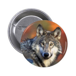 Wolf Photograph Pinback Button