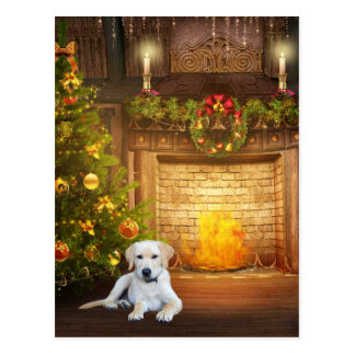 Yellow Labrador Retriever Christmas Cards Zazzle