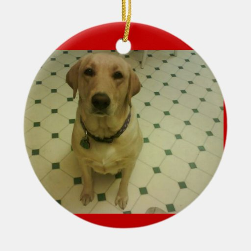 Yellow Lab Christmas Ornaments