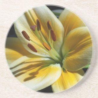 Yellow Lily Coaster coaster