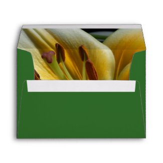 Yellow Lily Envelope envelope