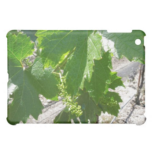 Young Green Grapes on the Vine in Spring iPad Mini Cover