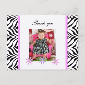 Zebra: Picture: Thank You Postcard