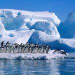 Studying Antarctica