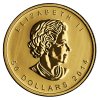 Canadian Gold Maple Leaf Obverse