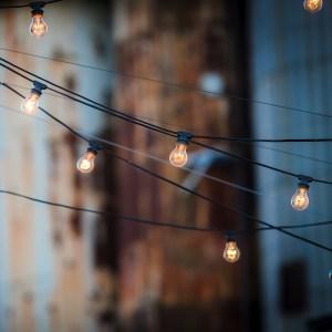 light-bulbs-1875268_1280