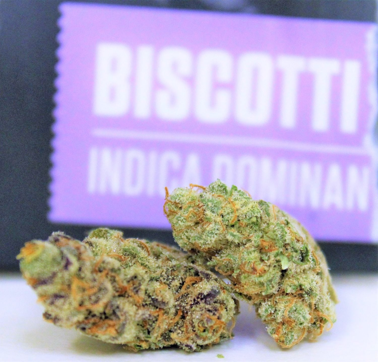 Why Is The Biscotti Strain So Dank? The Genetics Are Very