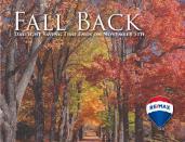 5 - Fall Road