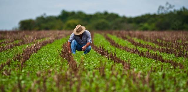 agricultura_