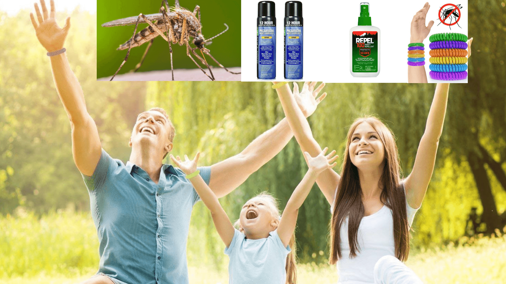 Top 5 Best Mosquito Repellent Reviews